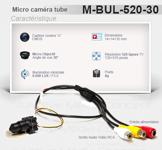 Micro caméra tube 520 Lignes angle de vue 30° illumination 0.008 LUX