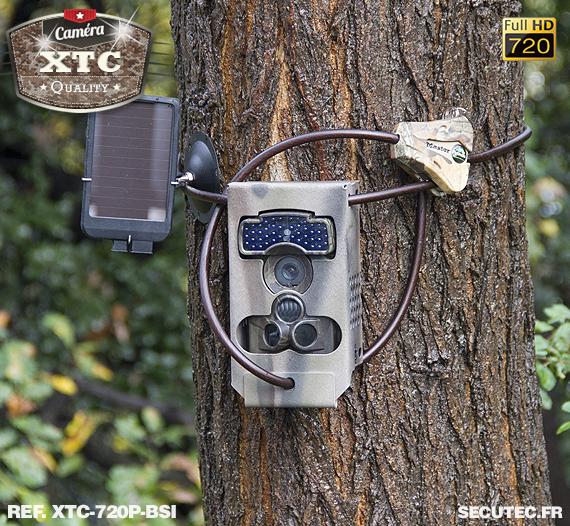 Kit XTC-720P-BSI fixé à un arbre