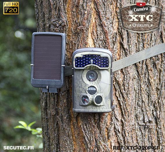 Kit XTC-720P-SI fixé à un arbre