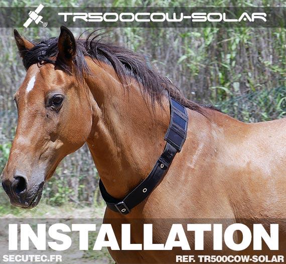 Collier traceur GPS / GSM sans abonnement solaire autonome sur cheval